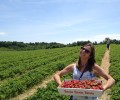 Just $10,000 Left to Conserve Monahan Farm