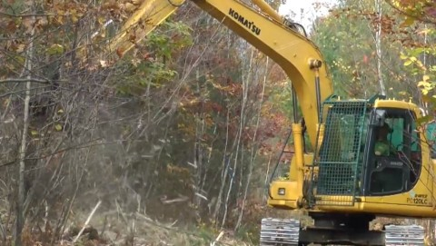 Timber Harvest at Two Rivers Wildlife Preserve